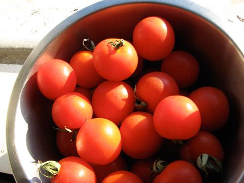 Tomatecereja